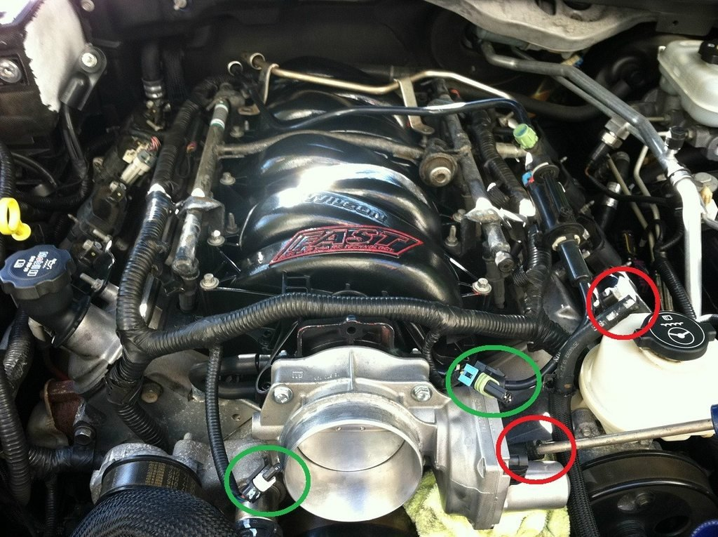 LS6 to LS2 Throttle Body Harness (Conversion) | Cadillac