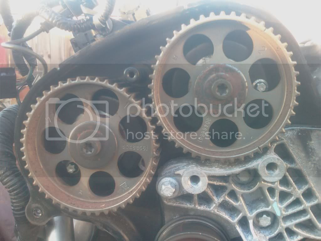 Dry Rotted Timing Belt