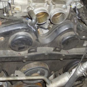 Timing belt cover and throttle body intakes.